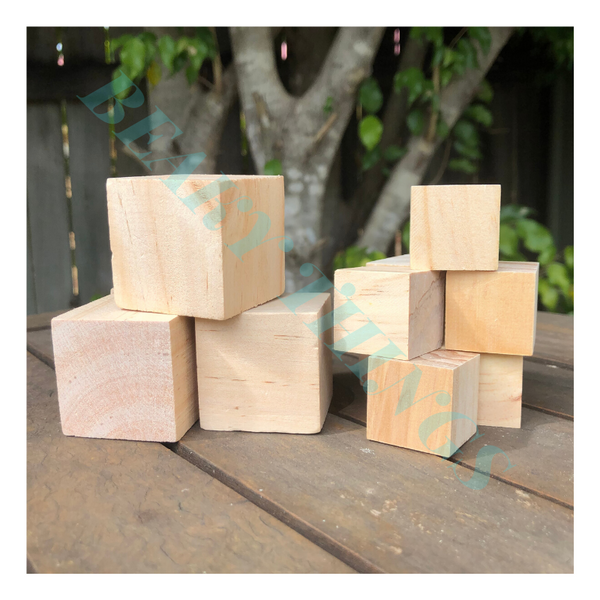Box of 24 Large Natural Blocks