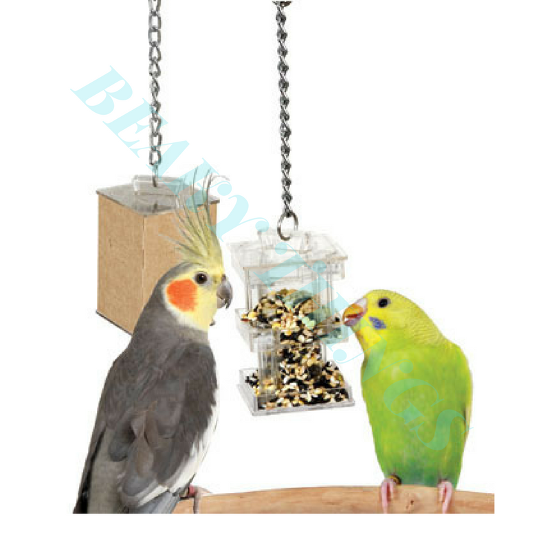 Hide Away Foraging Box Feeder
