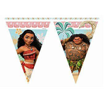 Moana Triangle Flag Banner