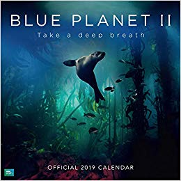 2019 Official Calendar Square BBC Blue Planet
