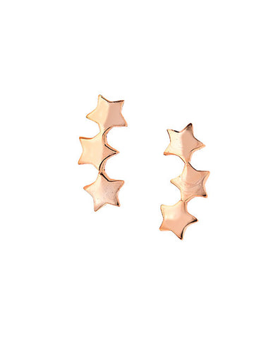 Dove Hook Earrings