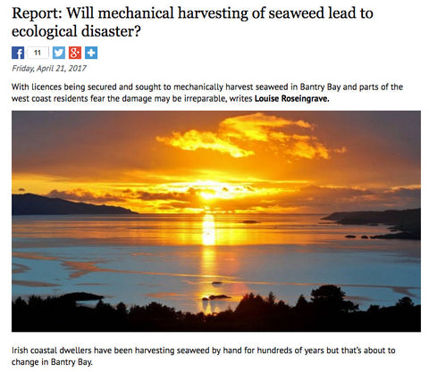 Mechanical Seaweed Harvesting - Irish Examiner