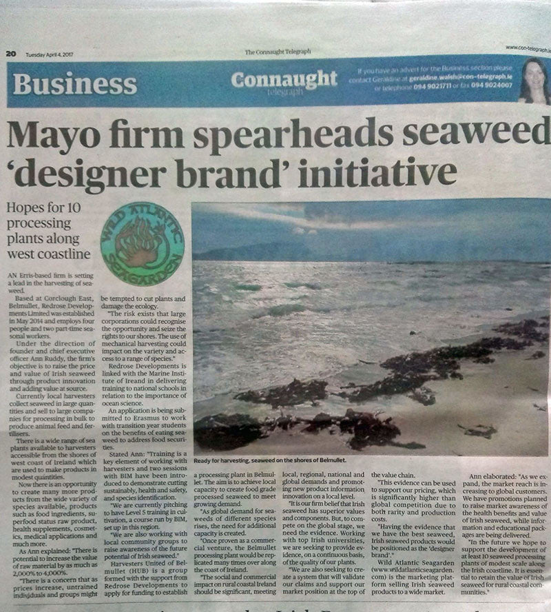 Connaught Telegraph Irish seaweed as Designer Brand