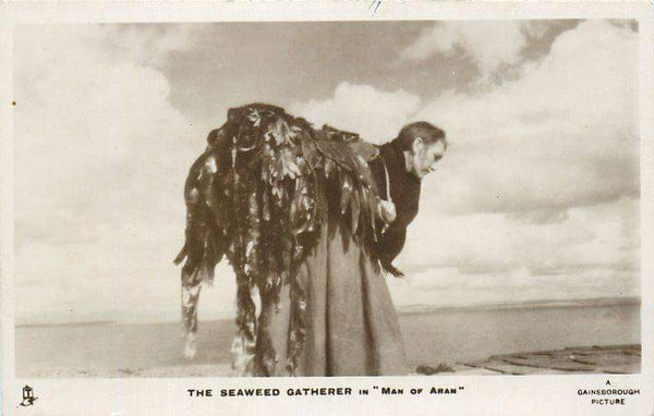 Irish seaweed harvester, from 'Man of Aran'
