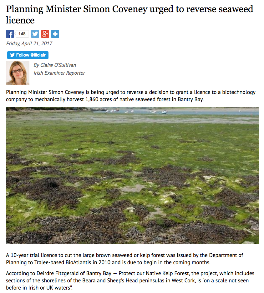 Seaweed licence petitioned to be reversed - Irish Examiner