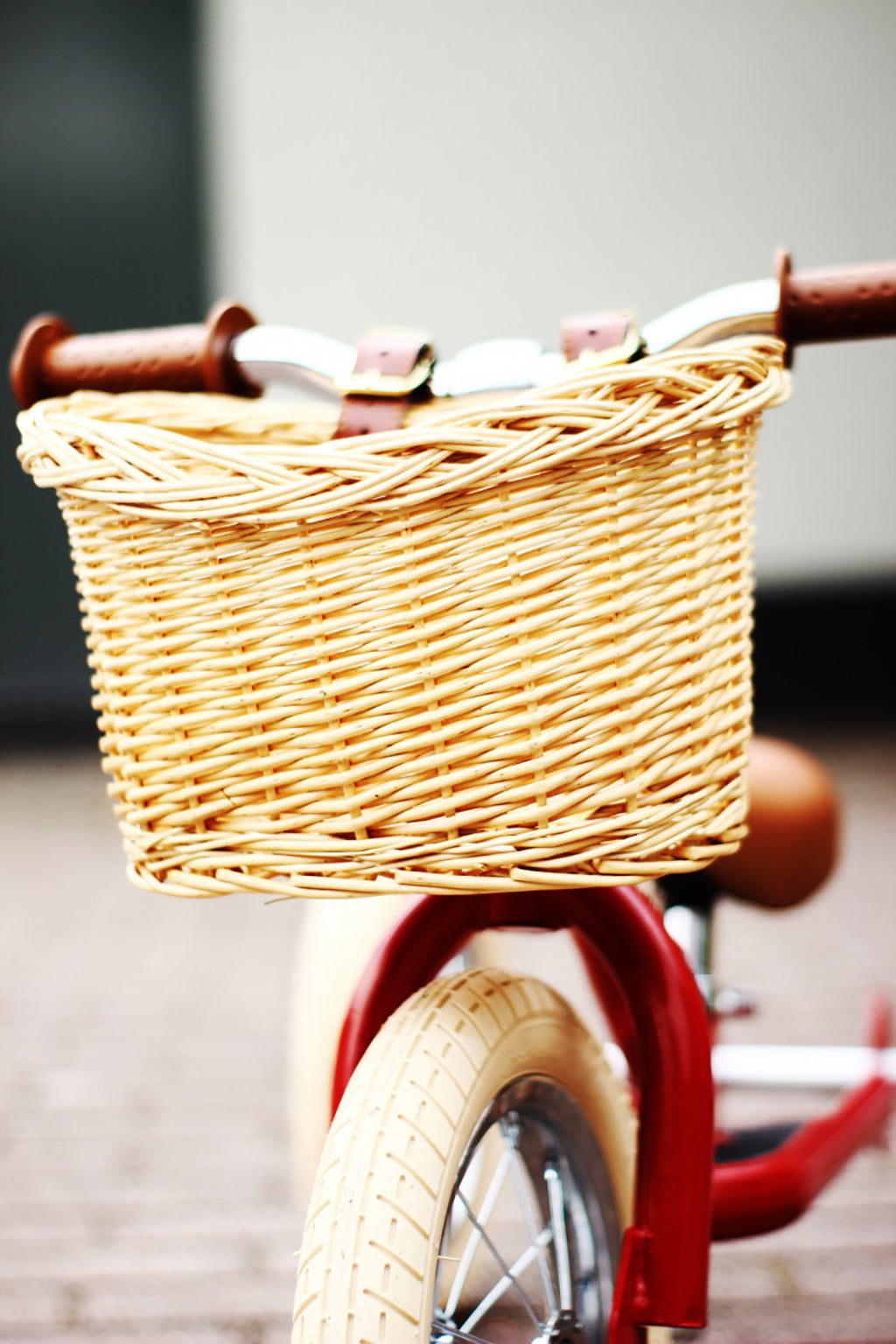 Trybike Wicker Basket - 4