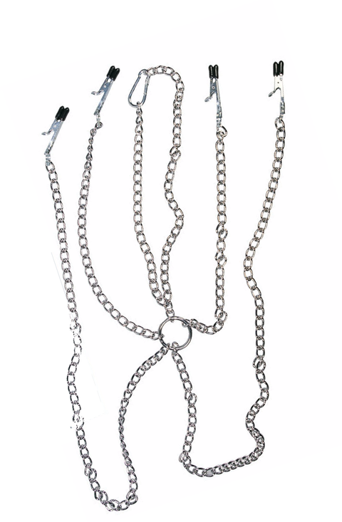 Metal Harness with 4 Clamps