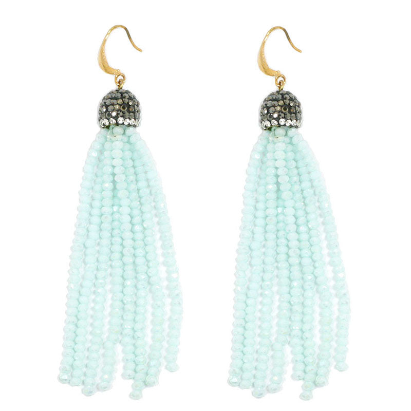 Seed Beads Tassel Earrings