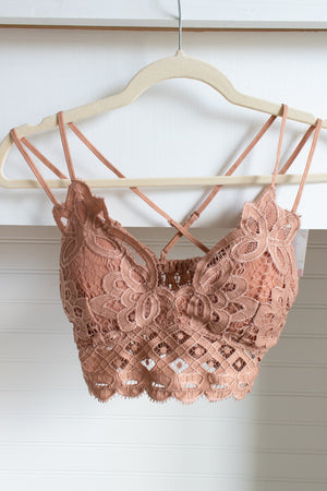 Scalloped Lace Bralette (apricot)
