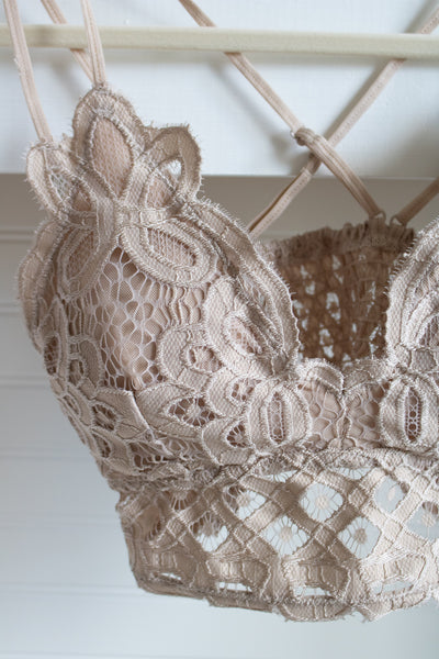 Scalloped Lace Bralette (light taupe)