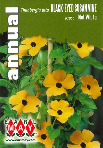 Black-Eyed Susan Vine Seed Packet Front