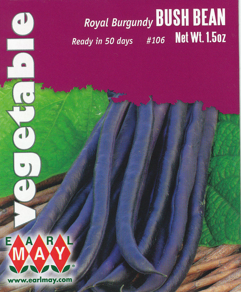 Royal Burgundy Bush Bean Seeds