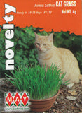 Avena Sativa Cat Grass Seeds