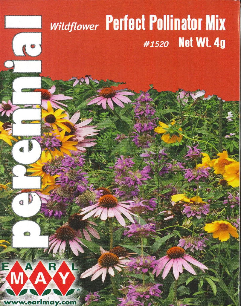 Wildflower - Perfect Pollinator Mixture Seeds