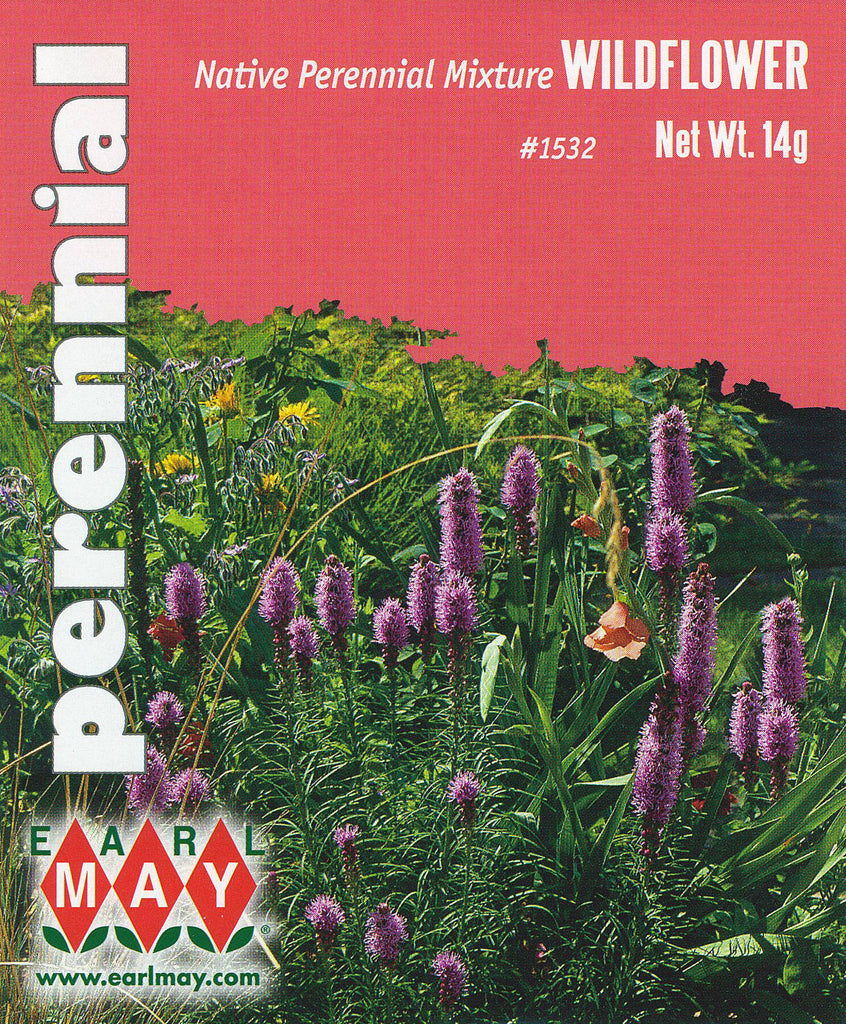 Native Perennial Mixture Wildflowers Seeds
