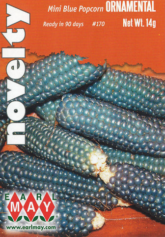 Mini Blue Popcorn Novelty Seeds