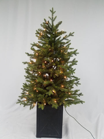 4.5FT Northern Fir with Sure Lit Lights - Ship to Store - Pickup In Store Only