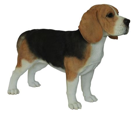 Border Concepts Standing Beagle