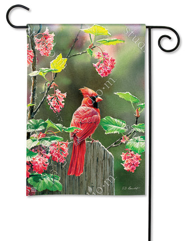 Garden Flag - Perched Cardinal