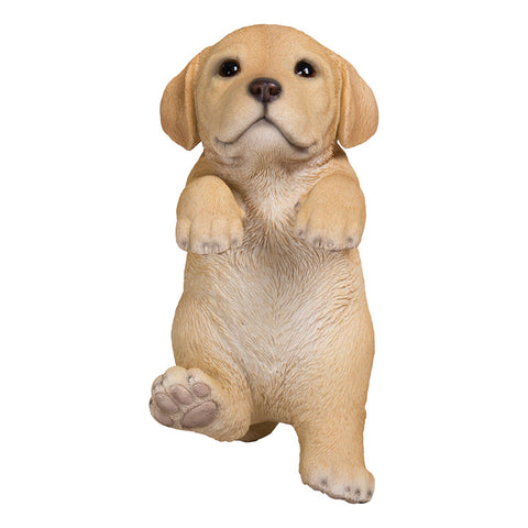 Hanging Yellow Lab Puppy