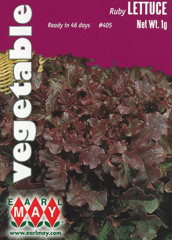 Ruby Lettuce Seeds