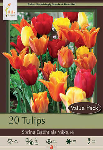 Tulip Spring Essentials Mix