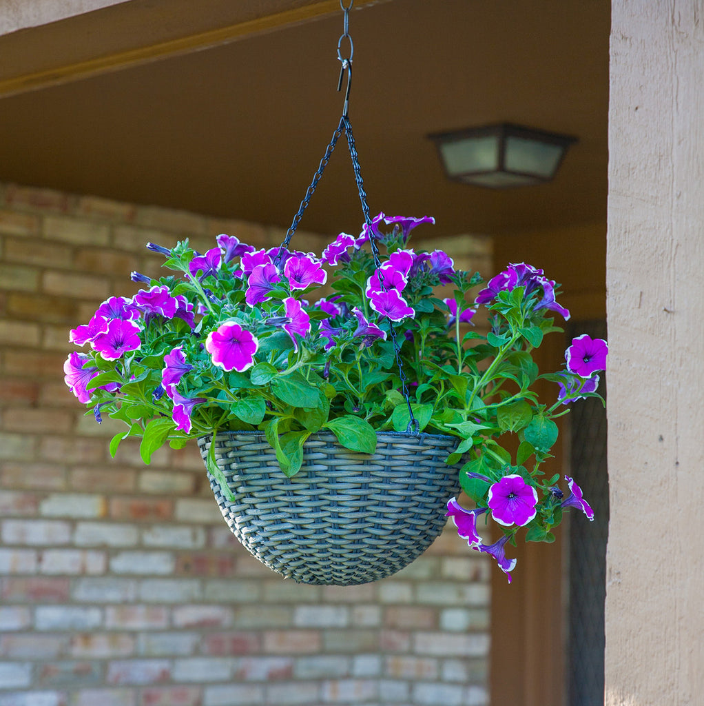 Panacea Resin Wicker Hanging Basket