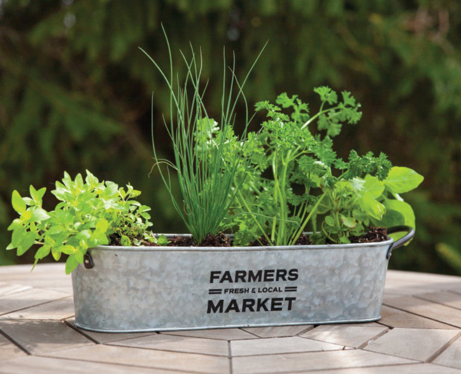 Farmers Market Oval Planter