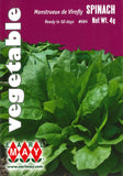 Spinach - Monstrueux de Virofly Seed Packet Front