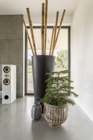 Bamboo Super Pole - Ship to Store - Pickup In Store Only