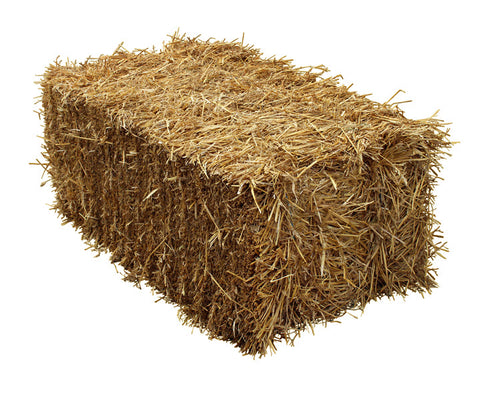 Wheat Straw Bale - Ship to Store - Pickup In Store Only