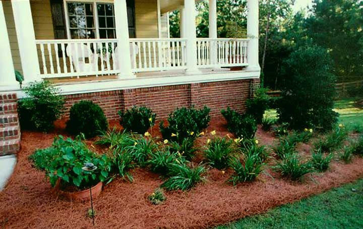 Pine Needle Mulch - Ship to Store - Pickup In Store Only