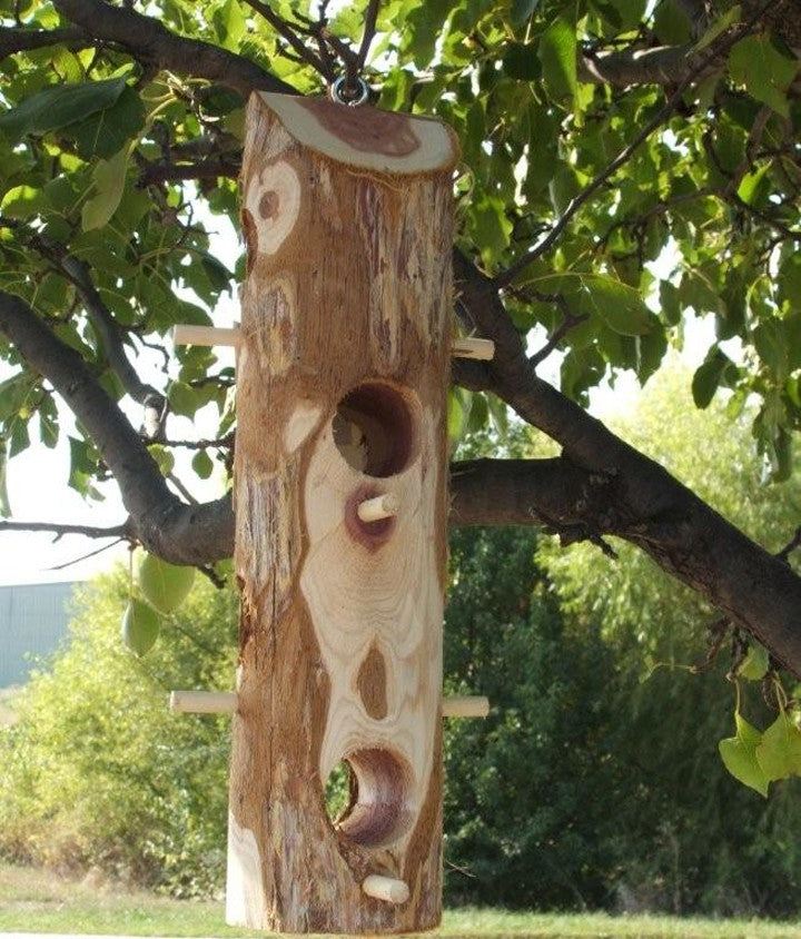 Suet Log with Perches