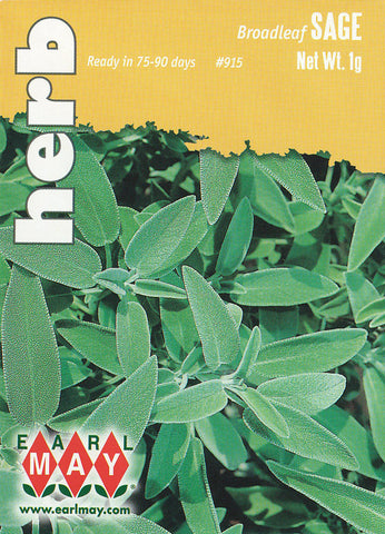 Broadleaf Sage Herbs Seeds