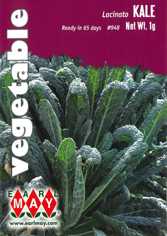 Kale - Lacinato Seed Packet Front