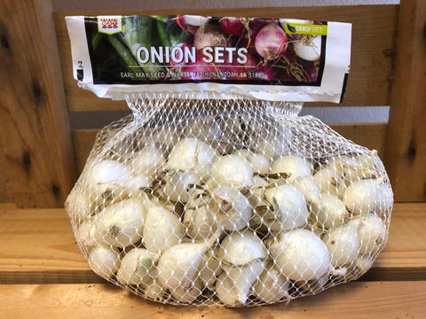 Onion Sets - White