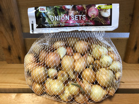 Onion Sets - Yellow