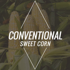 Conventional Sweet Corn