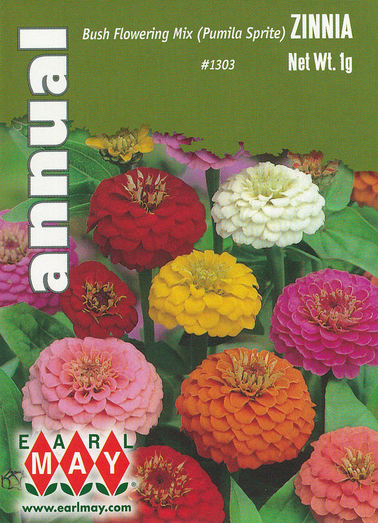 Bush Flowering Mix (Pumila Sprite) Zinnia Seeds