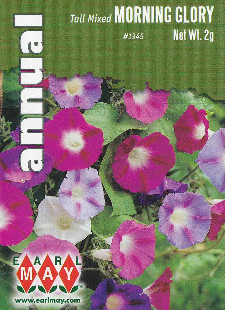 Tall Mixed Morning Glory Seeds