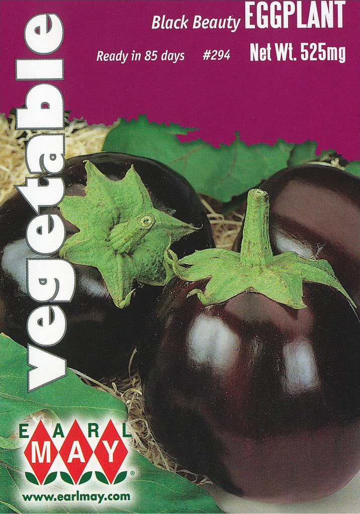 Black Beauty Eggplant Seeds