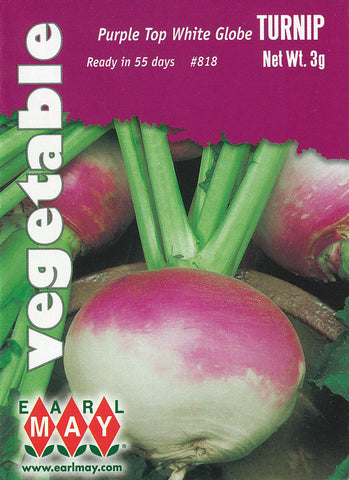 Purple Top White Globe Turnips Seeds