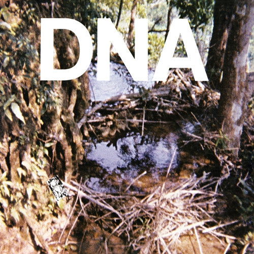 DNA - A Taste Of LP