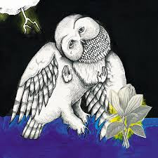 Songs: Ohia - the Magnolia Electric Co. LP