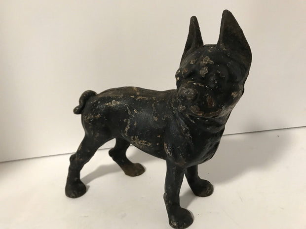 Cast Iron Boston Terrier Antique Large Hubley Original Figurine Doorstop or Fireside piece