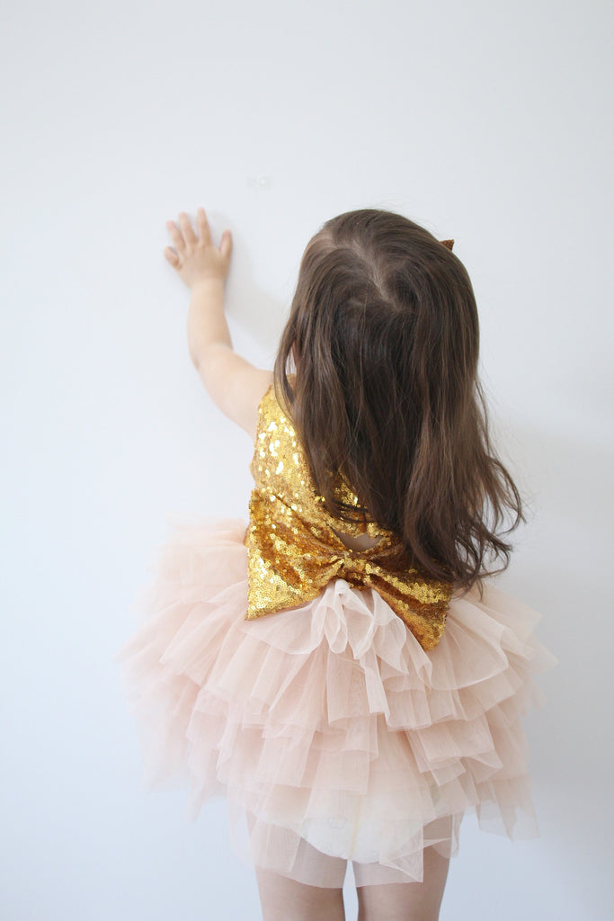 Gia - Blush Sequin Tulle Dress