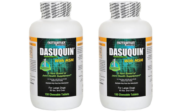 Dasuquin Chew MSM Large 300ct