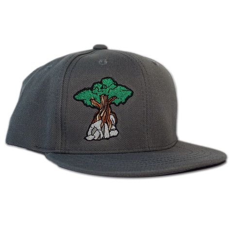 Juniper Tree - Youth Snapback Hat - Charcoal Grey