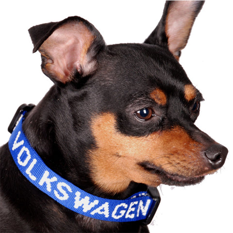 VW Royal Woven Pet Collar