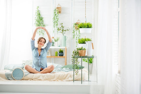 Latest news and articles related to flowers tagged indoor plants 5 pretty indoor plants that bring positive energy mightylinksfo